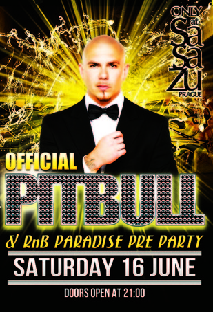 Small pitbull rnb paradise2b