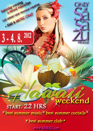 Small flyer hawaiiparty